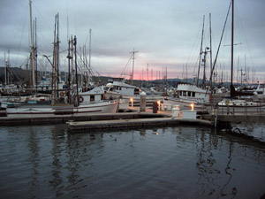 Northern California Coastal Fishing Harbor. Photo by D.A. Levy.