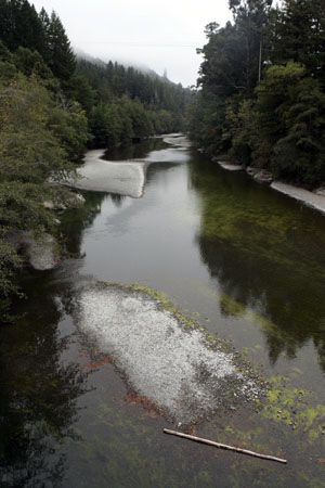 The Mattole River, upstream view. Photo by Michael Maloney, SF Chronicle.
