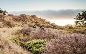 Hikers on a trail at Bodega Head. Photo courtest California State Parks.