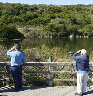 The Hole-in-the-Head pond; once a site for a nuclear reactor, now a bird refuge. Photo by Michael Maloney, S.F. Chronicle.
