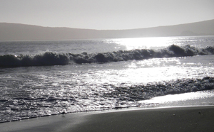 Waves roll from distant Tomales Bay onto the beach at Bodega. Photo by John Weed.