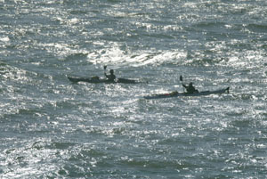 Weed and McHugh paddle on a windswept sea, past the headlands of Bodega Bay. Photo by Michael Maloney, S.F. Chronicle.